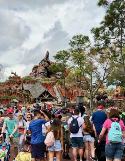 Disney Crowd